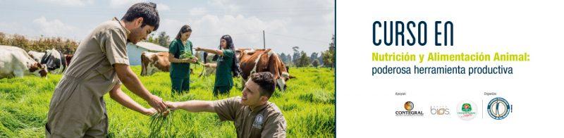 Curso En Nutricion Animal Banner Interno 2